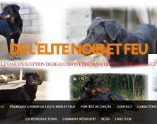 Capture-elevage-beauceron-paca