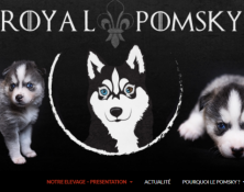 Capture-royal-pomsky
